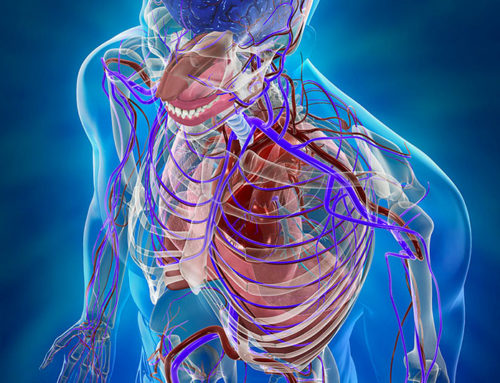 Chirurgia Vascolare, Angiologia e Flebologia